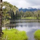 Crane Lake bei Petersburg, Tongass National Forest, Mitkof Island, Südost-Alaska, USA