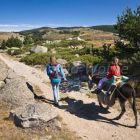 family-hiking with a donkey in the Cevennes mountains, France, Europe