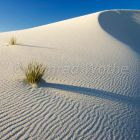 Dune, gypsum dune field, White Sands National Monument, New Mexico, USA