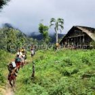 Expedition to the Arfak Mountains, West Papua, New Guinea, Indonesia, Asia