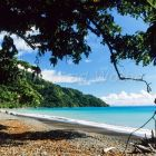Coast with tropical mountain rainforest, Arfak Mountains, West Papua, New Guinea, Indonesia