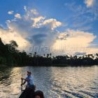 Rainforest at Sandoval Lake, Tambopata National Reserve, Peru, South America