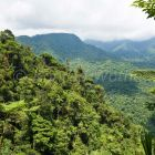 mountain rainforest, Braulio-Carrillo Nationalpark, Costa Rica, Central America
